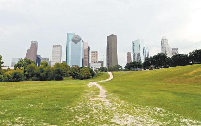 2011 Houston Grocery Profile