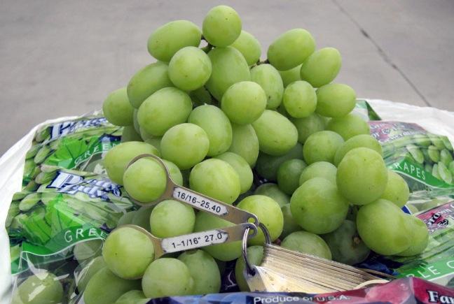 Dulcich grapes