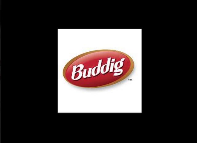 buddig logo