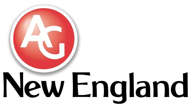 AGNE logo
