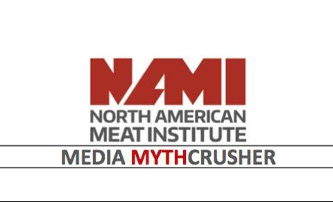 NAMI MythCrusher