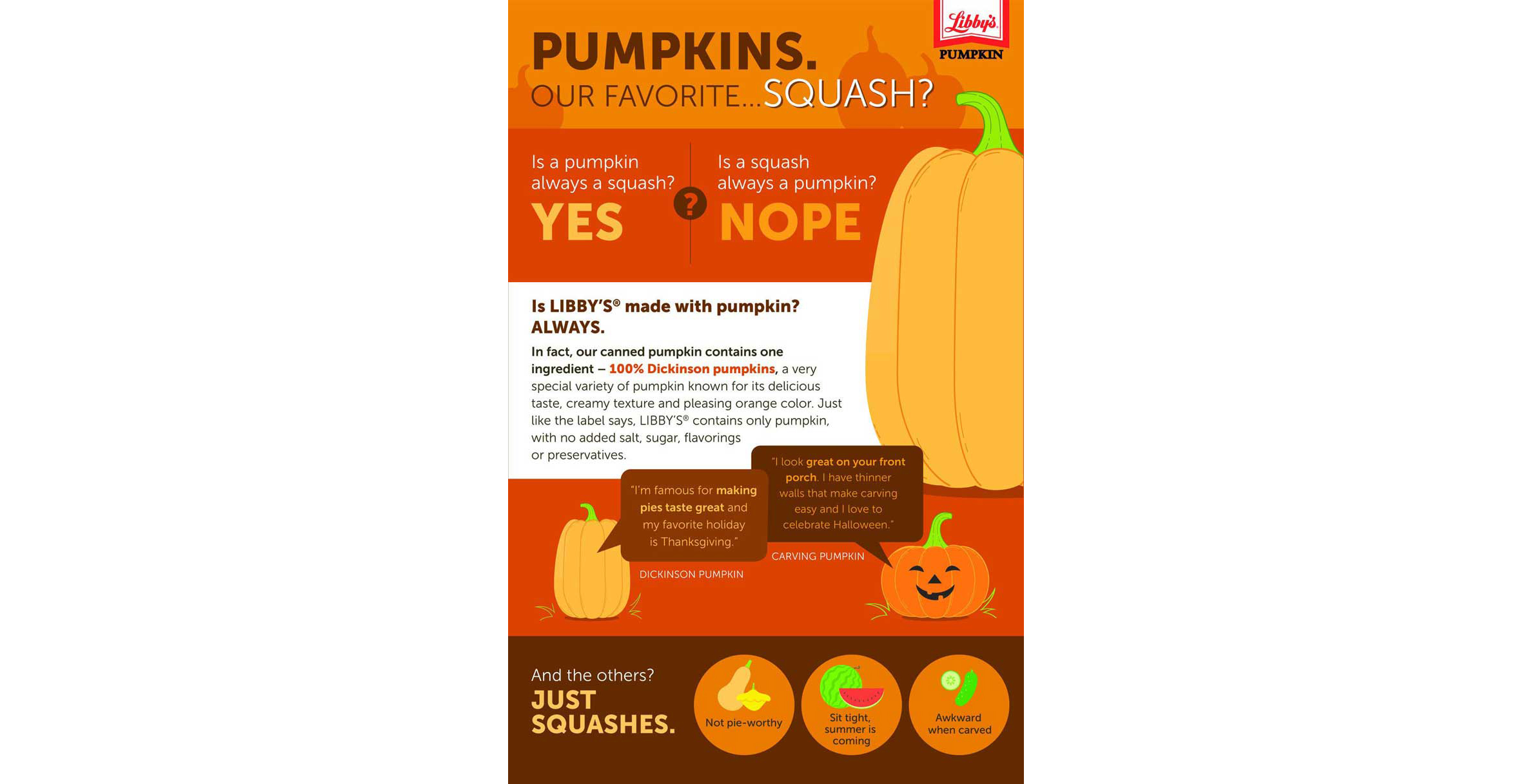 Pure pumpkin infographic