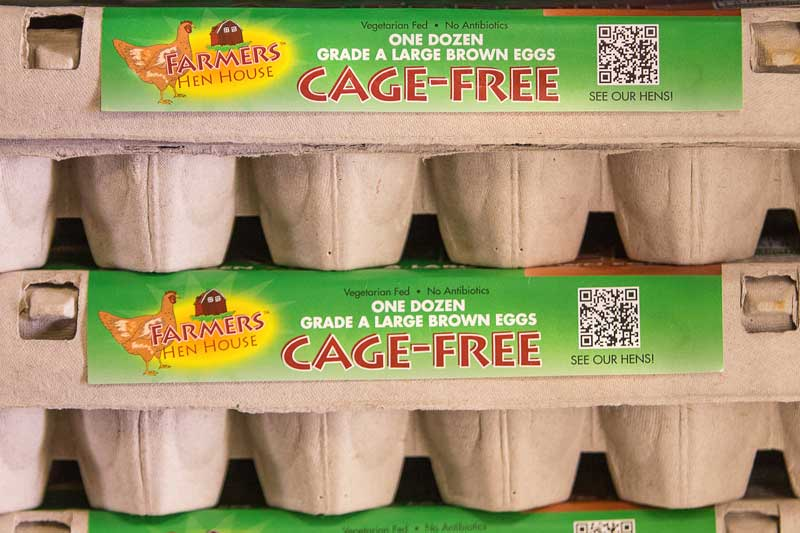 Natural Grocers eggs