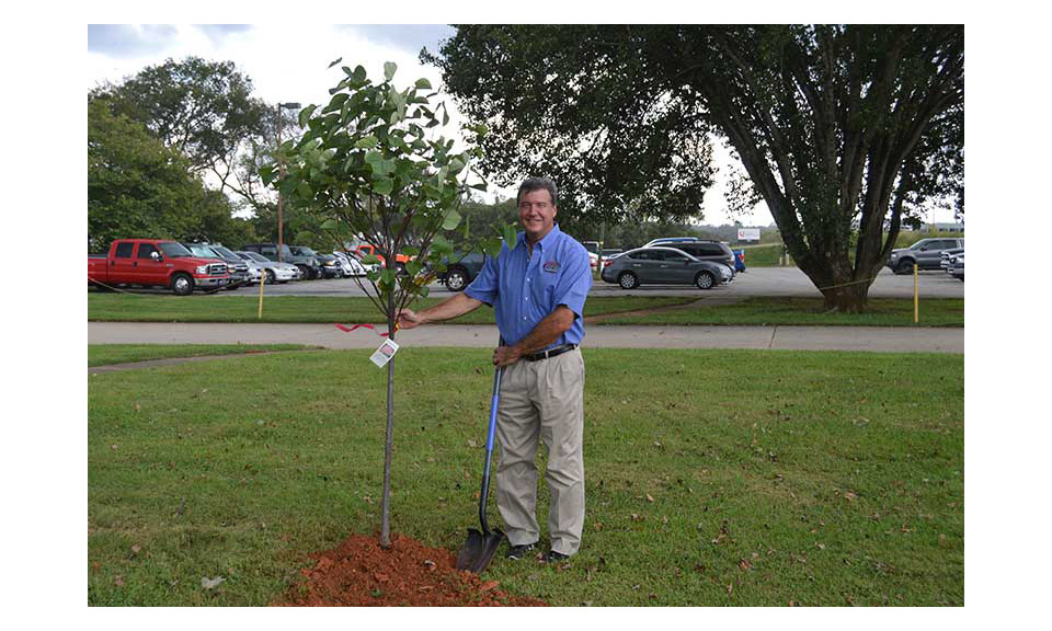 BAM Owner Tad Geschickter planting a tree to celebrate Plant A Tree Day and BAM's partnership with One Tree Planted.