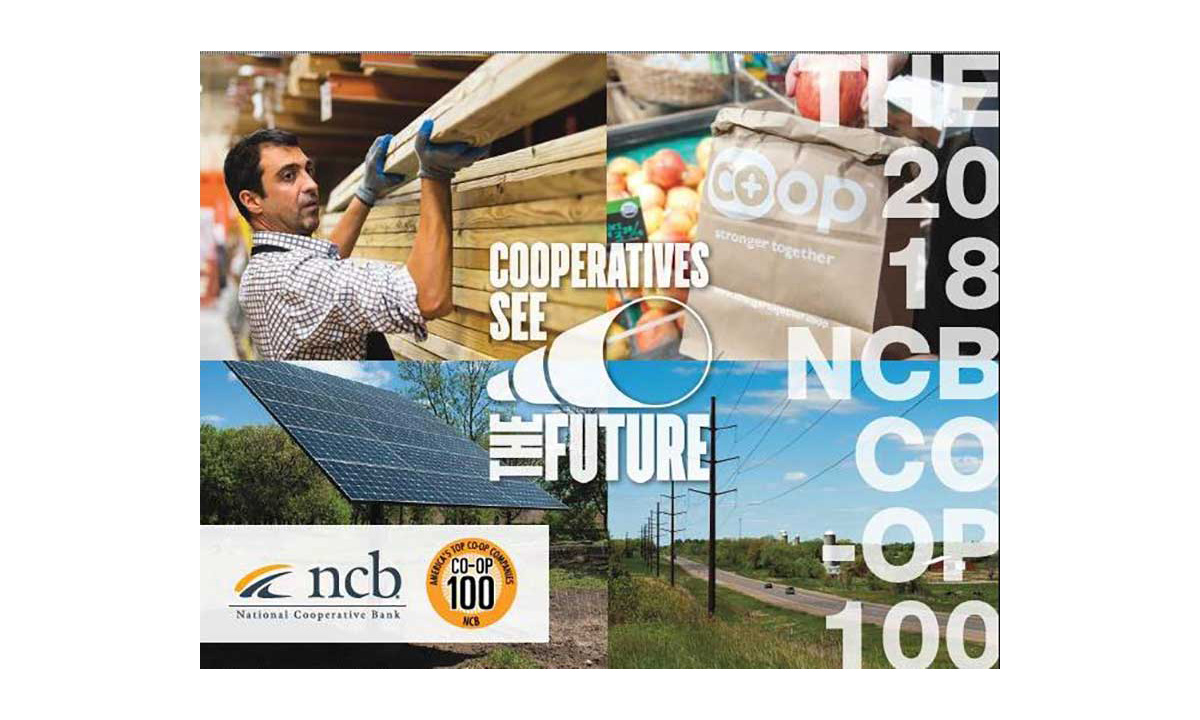 NCB Co-op report cover