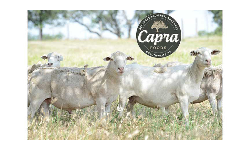 The Capra Foods logo imposed over an image of sheep in a field