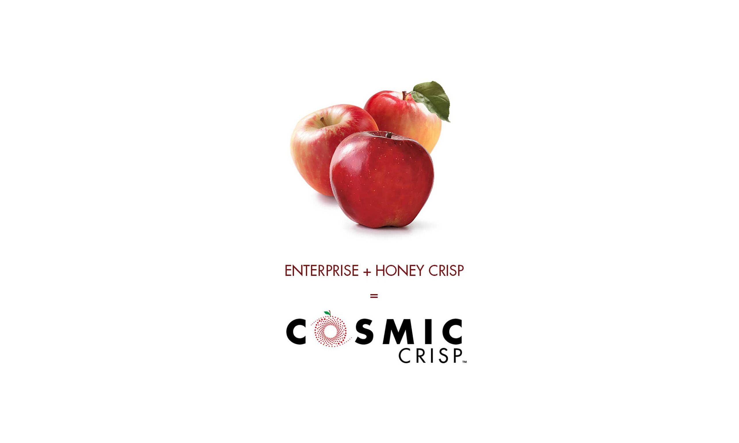 A Cosmic Crisp marketing poster