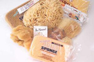 Acme sponges