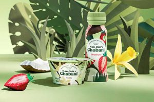 Non-Dairy Chobani products