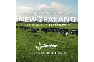 Anchor Dairy