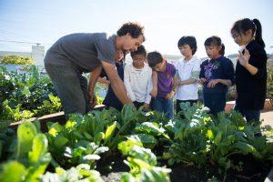Sprouts Neighborhood Grants