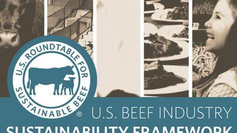 U.S. Beef Industry Sustainability Framework