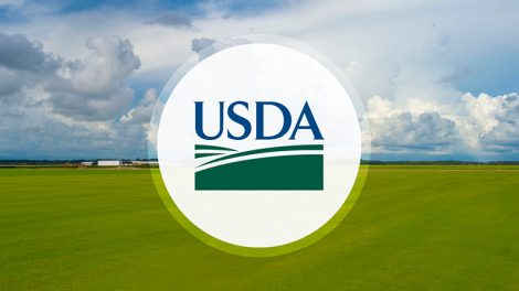 USDA SNAP recipient fraud