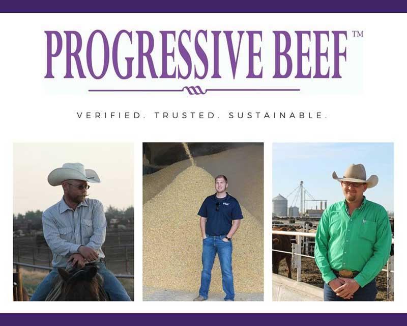 Progressive Beef