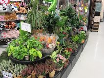 Hugo's floral department