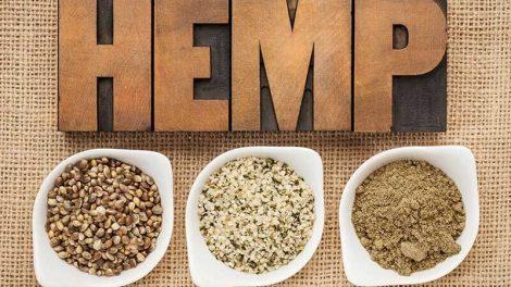 hemp, regulatory, USDA