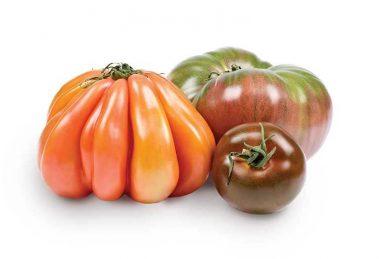 Wholesum Heirloom Tomatoes