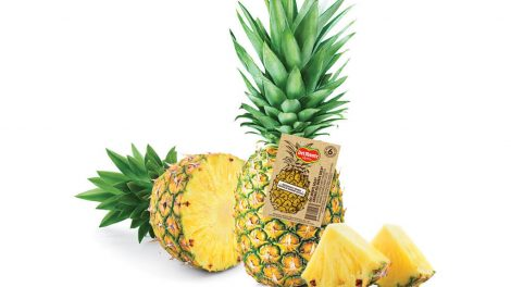 Del Monte Fresh pineapple tags
