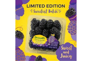 Driscoll's blackberries