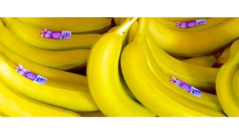 One Banana Fair Trade