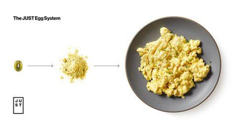 Just Egg system