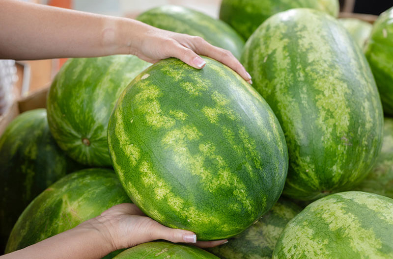 watermelon promotion