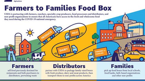 DiMare Fresh, FArmers to Families Food Box