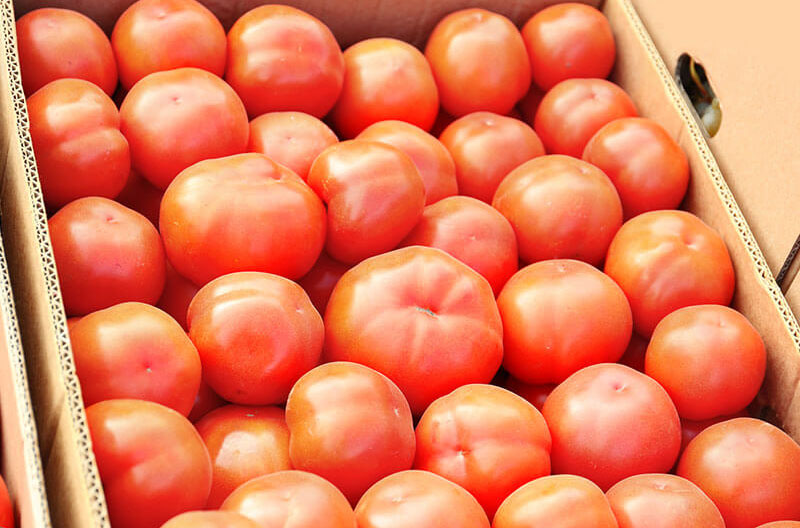 corrugated box with tomatoes