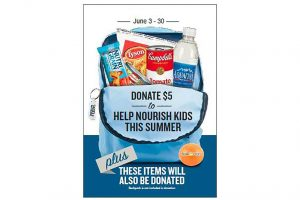 Food Lion donate hunger campaign