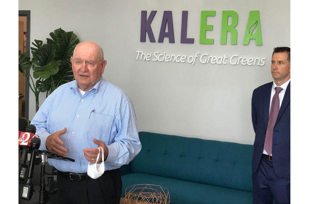 Kalera hydroponic