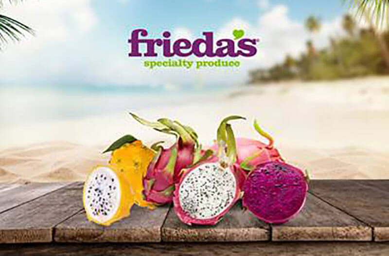 Friedas tropical