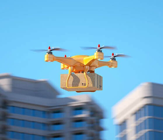 Rouses drone delivery