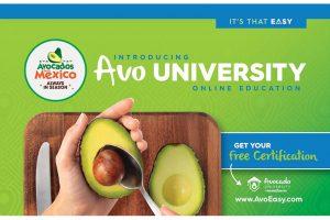 Avocados From Mexico Avo University