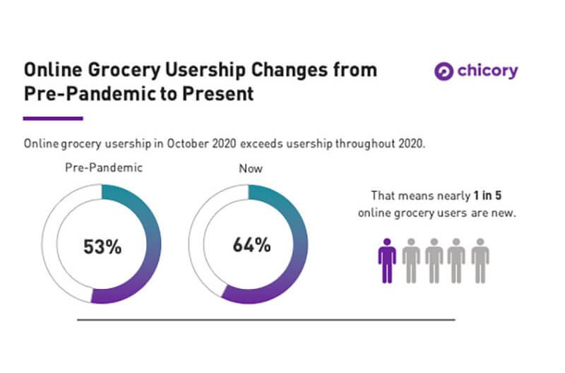 Chicory usership